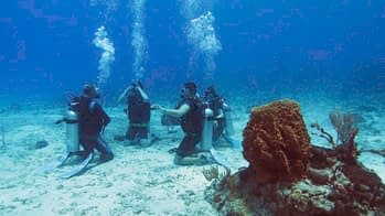 Learn to scubadive in Belize